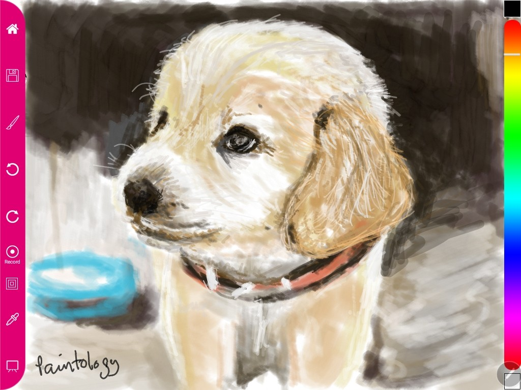 Draw a puppy using the Paintology brush tools charcoal and line.