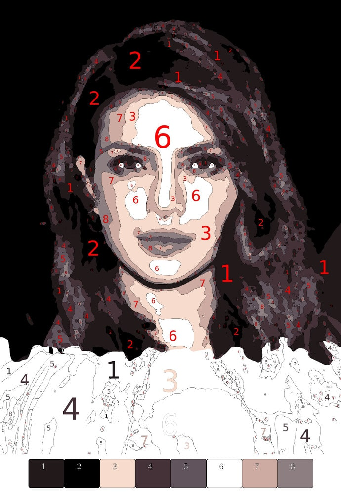 paint by number - Priyanka feature
