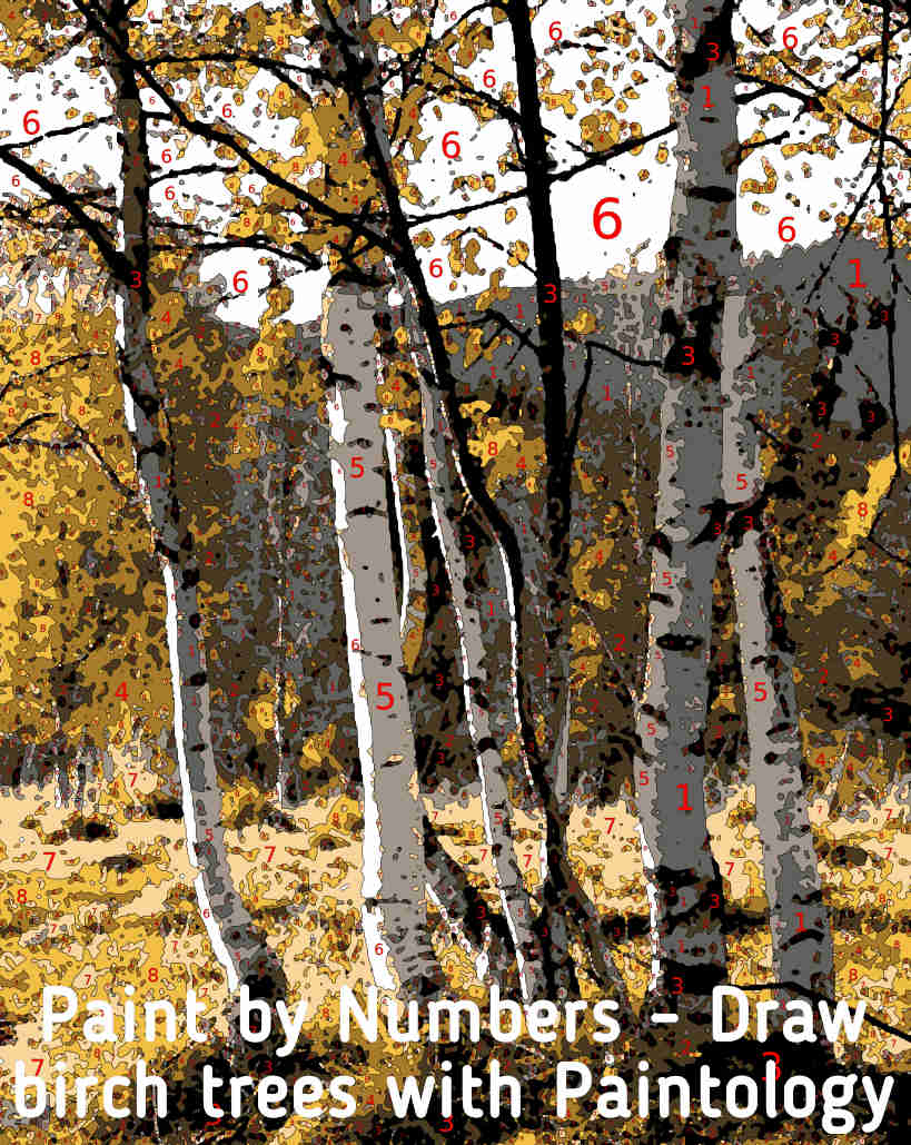 paint by number - draw trees featured