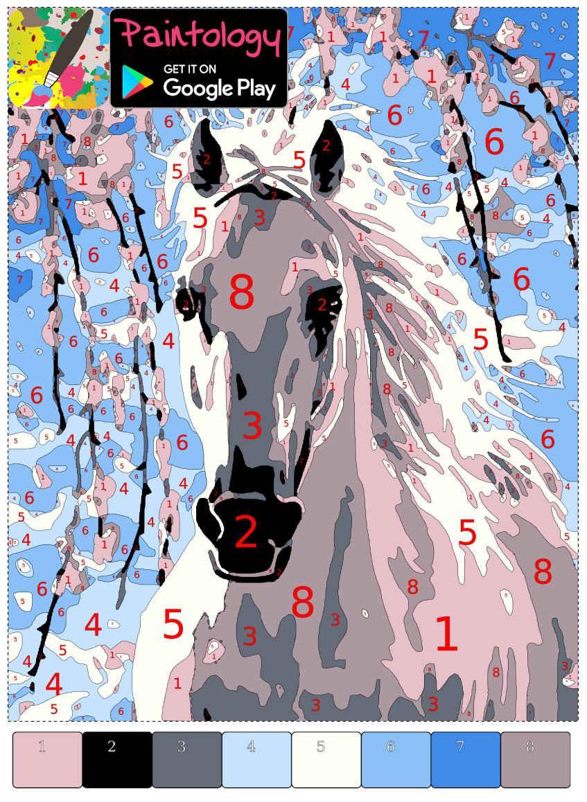 horse featured - PbyNo