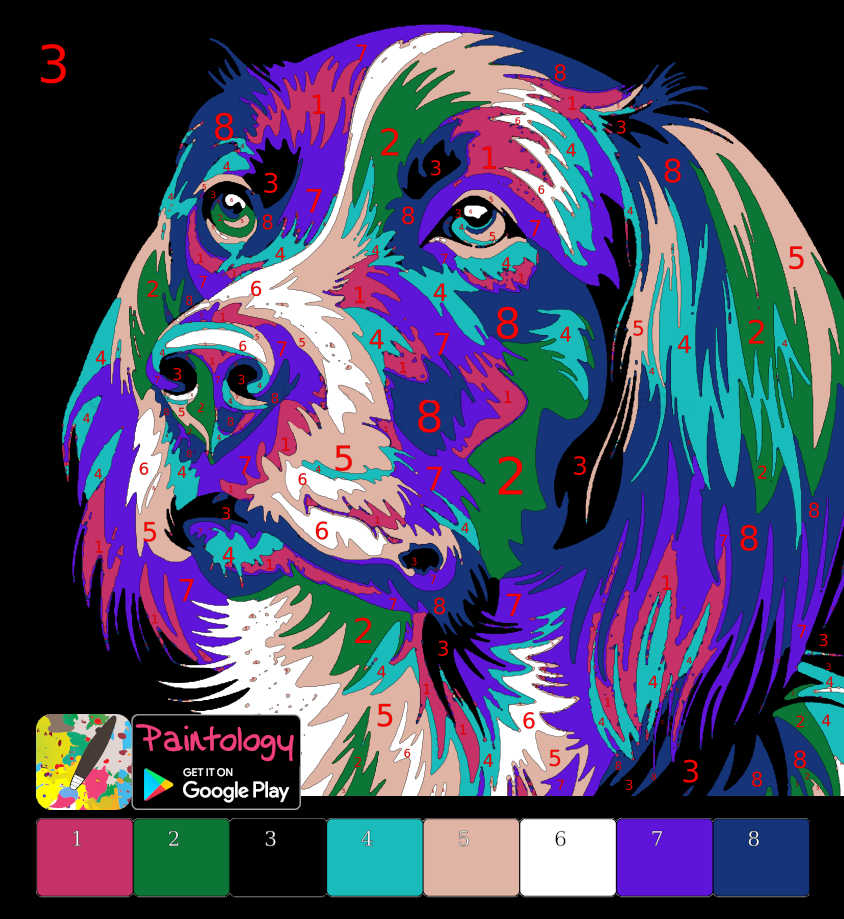 PbyNo - featured - dog tutorial